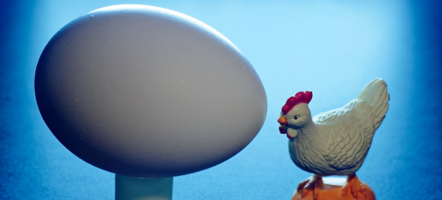 social media chicken and egg